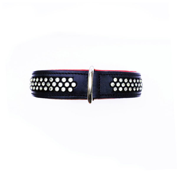 Flasher Dog Collar Red 2