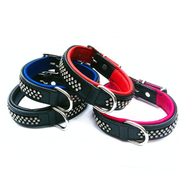 Flasher Dog Collar Group