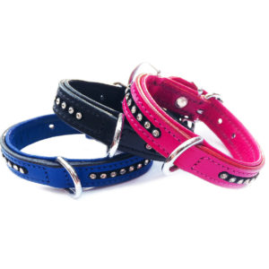 Bougie Dog Collar Group